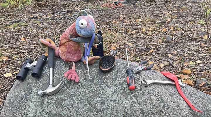 Kameleontti työkalujen keskellä