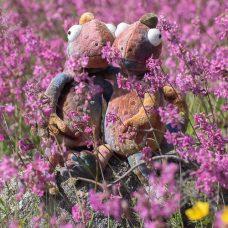 Kameleonttimaskotit kesäisellä kukkakedolla